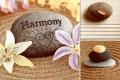 Гармония декор